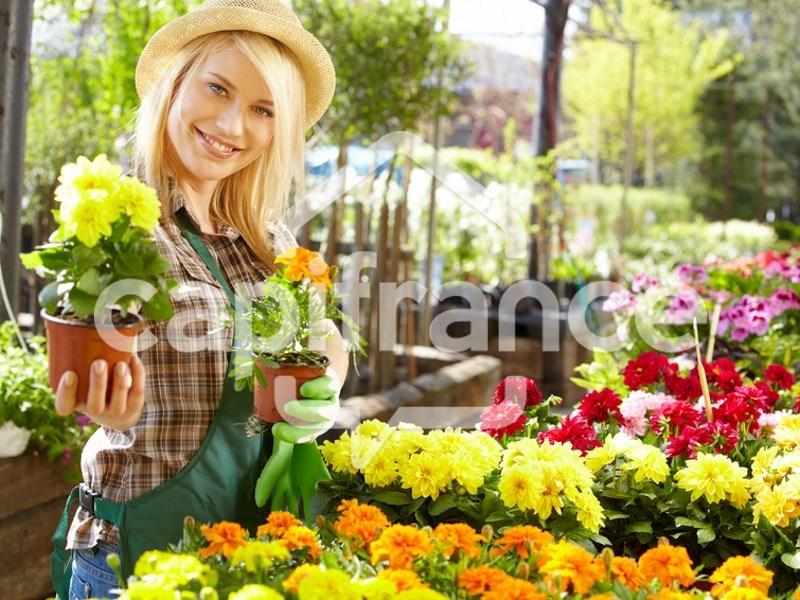 Dpt is re 38 vendre proche de vaulx milieu fleuriste for Fleuriste proche